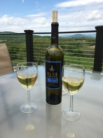 Sit and enjoy your wine on the terrace. Relax and exhale.