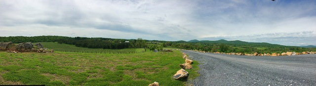 Blue Valley Winery view